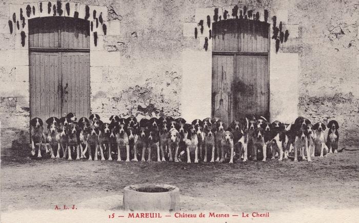Vautrait de Montrésor - Vautrait de Mesnes (9)