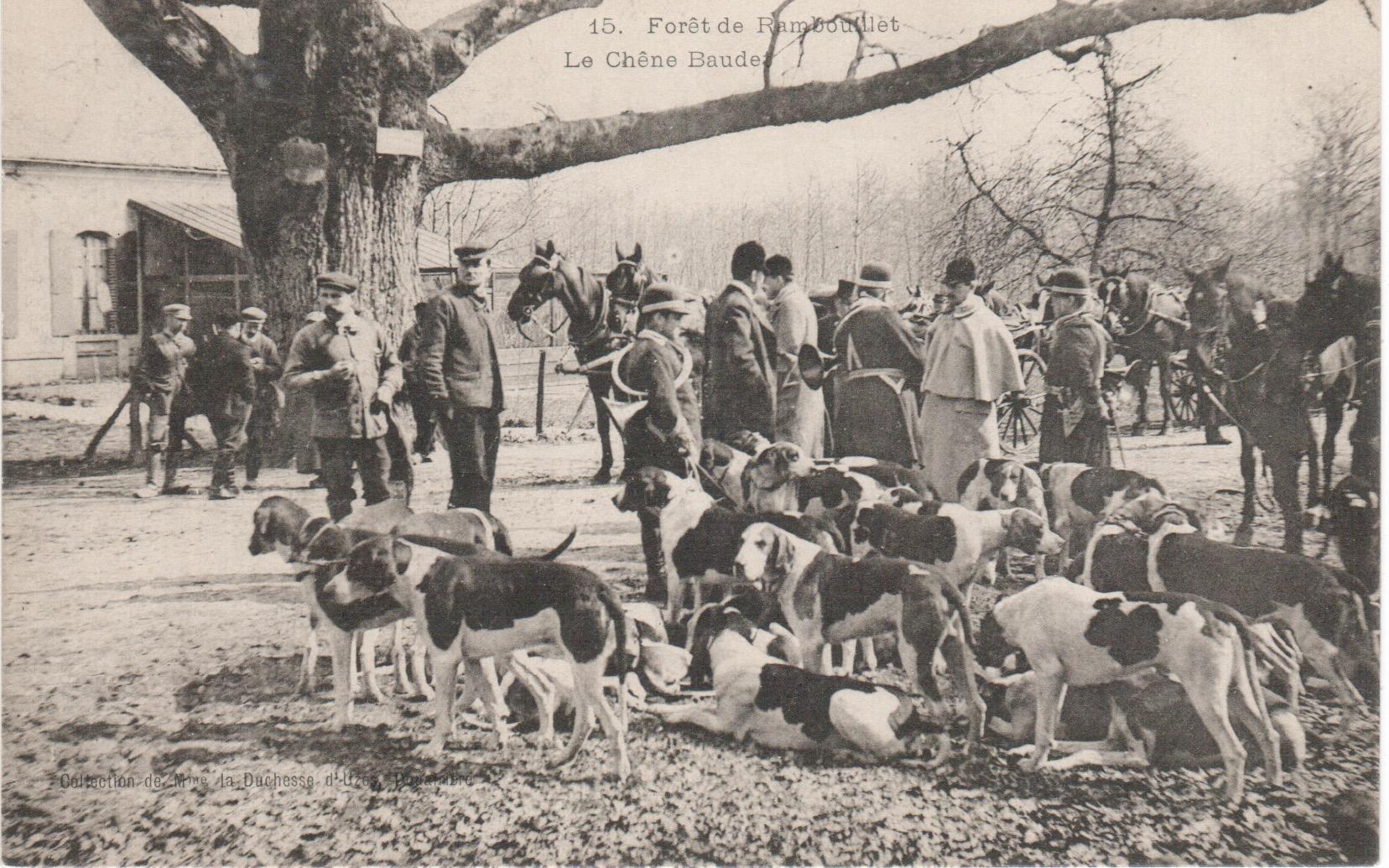 Equipage de Bonnelles Rambouillet (31)