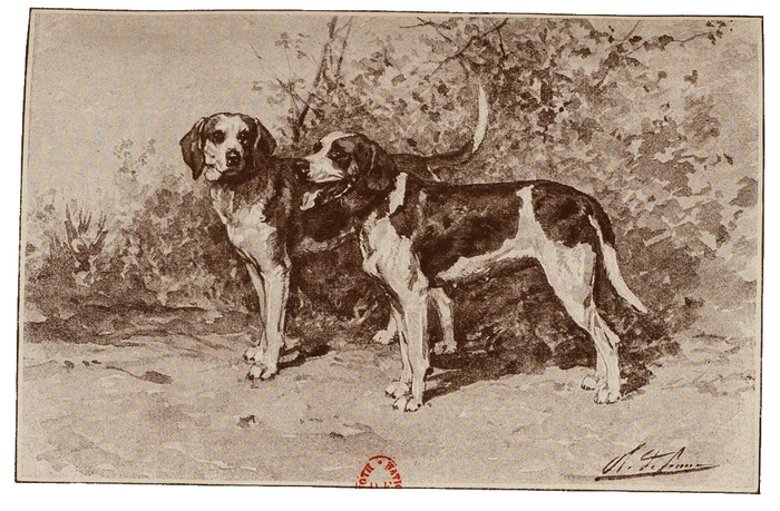 Illustration tirée du Manuel de Vènerie française - Emmanuel Le Couteulx de Canteleu (1890) - Hachette et Cie (Paris) - BnF (Gallica) (10)