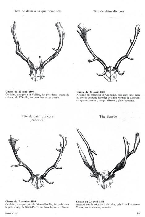 Prises de l'Equipage Songeons en forêt de Compiègne - Vènerie n°114 - 1994 2/2
