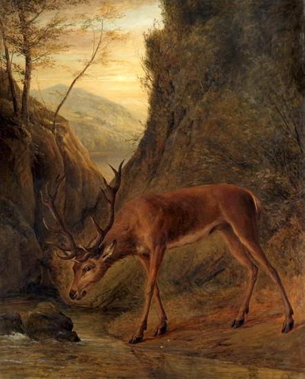 Un cerf - 1868 - © Joconde - RMN - H. Lewandowski - Paris - Musée d'Orsay